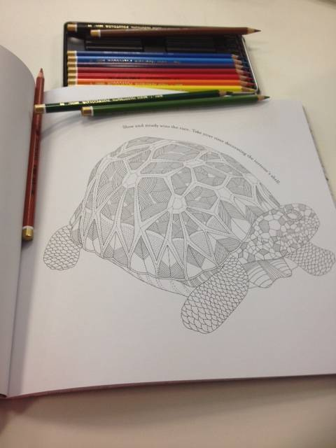 Mindful drawing in your lunch break