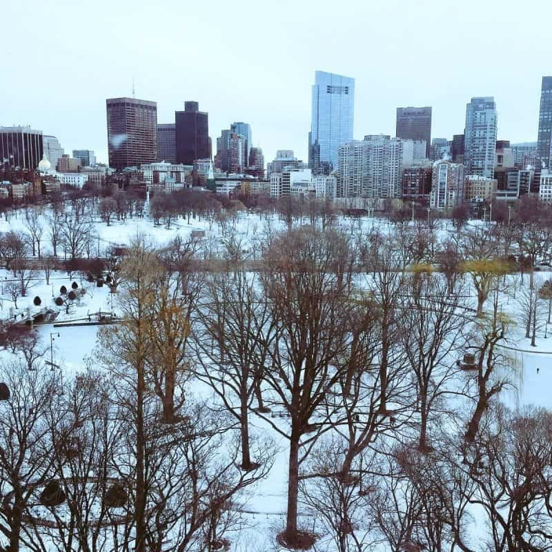 Boston Common in the snow