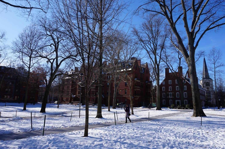 Harvard Yard in Boston