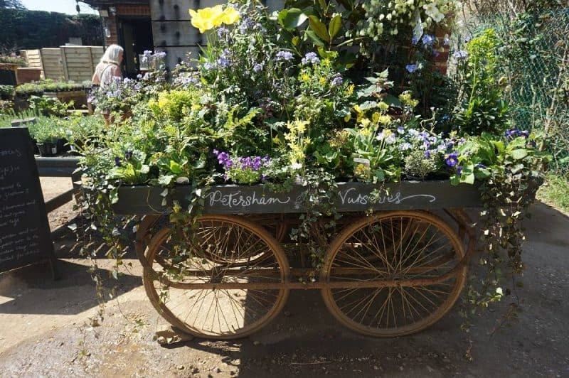 Petersham Nurseries in Richmond