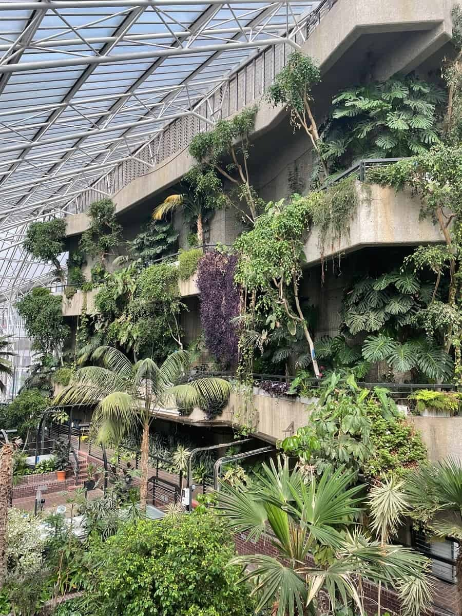 Plants in the Barbican observatory